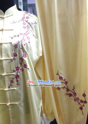 Chinese Professional Martial Arts Silk Tai Chi Suit
