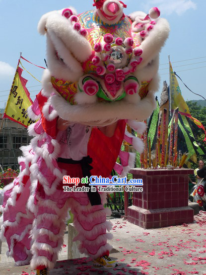 Supreme Chinese Lion Dance Costumes Complete Set