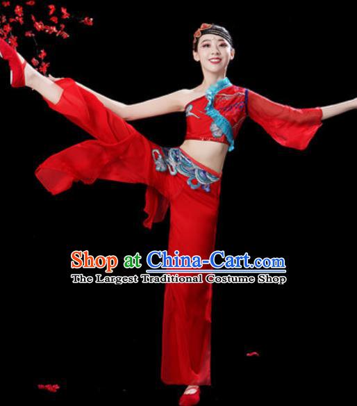 3d759c0e5 Traditional Chinese Folk Dance Single Sleeve Costumes Fan Dance Yangko  Dance Red Clothing for Women