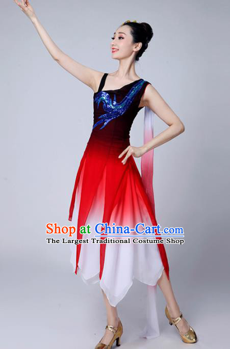 Chinese Traditional Classical Dance Costumes Stage Performance Dance Dress for Women