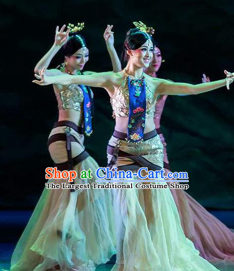 Chinese Lady Zhaojun Court Classical Dance Dress Stage Performance Dance Costume and Headpiece for Women