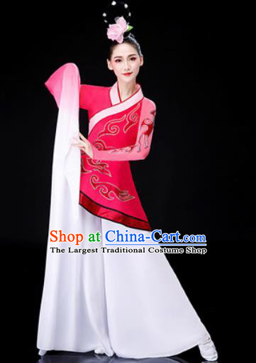 Chinese Traditional Classical Dance Rosy Dress Water Sleeve Dance Stage Performance Costume for Women