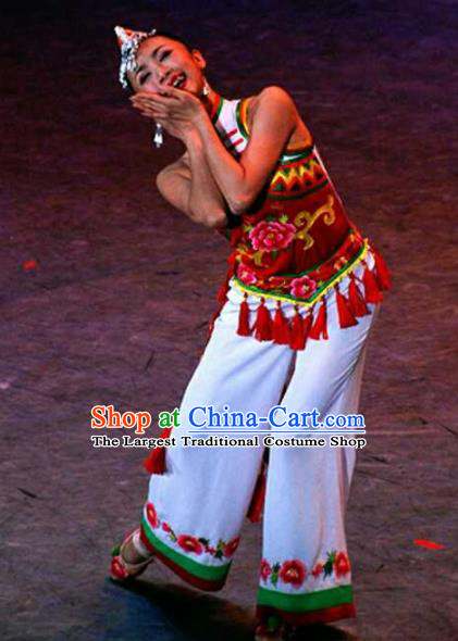 Chinese Traditional Fan Dance Clothing Folk Dance Stage Performance Costume for Women