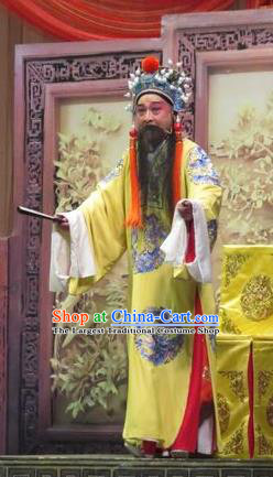 Yang Bajie You Chun Chinese Ping Opera Emperor Renzong Costumes and Headwear Pingju Opera Elderly Male Apparels Official Clothing